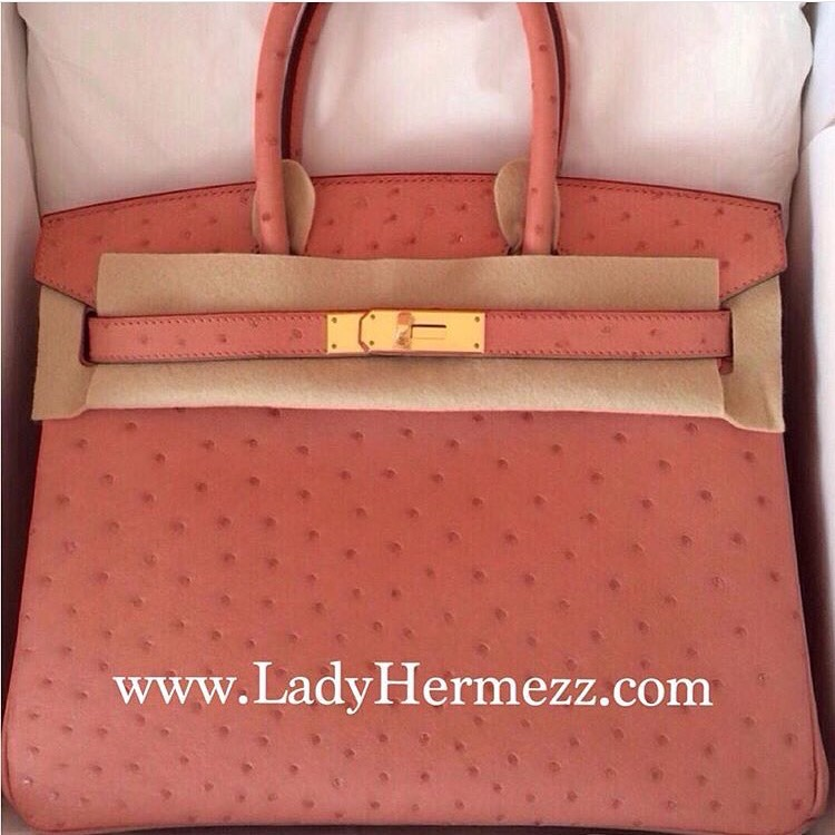 bags that look like birkin - Ostrich Archives - LadyHermezz.Com